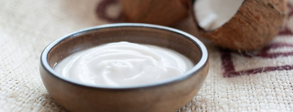 Coconut Yoghurt Thermomix Recipe