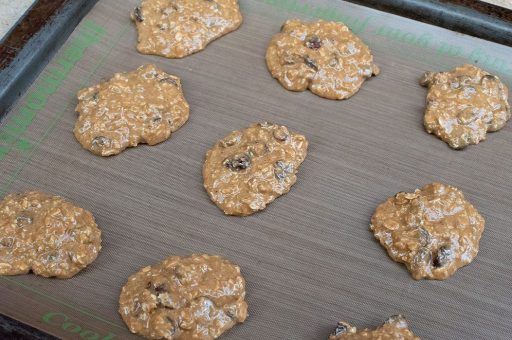Oat Raisin Cookies and Chocolate Chip Cookies Thermomix Recipe