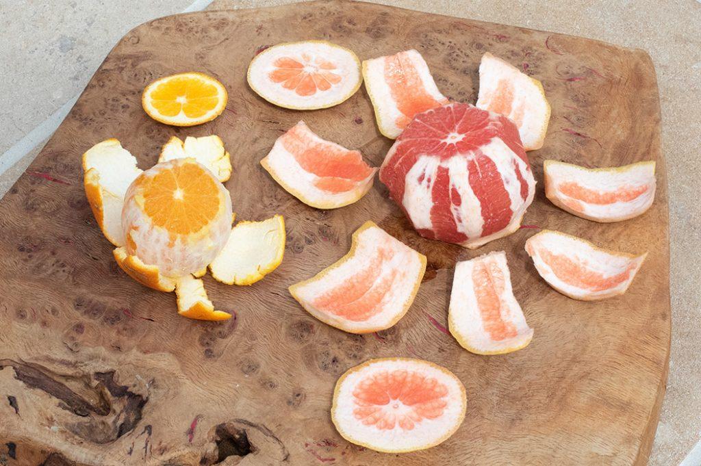 Grapefruit Orange Slushy Thermomix Recipe